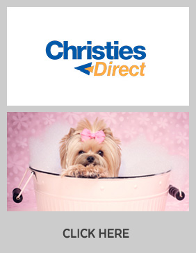 Click here to view the Christies Direct case study