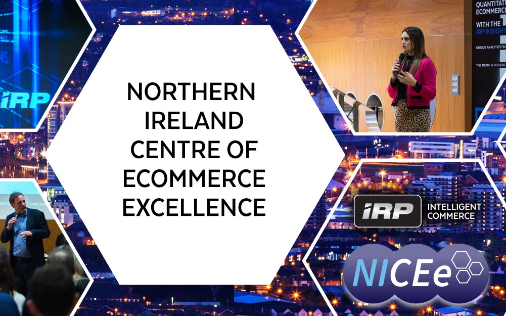 NI Centre of Ecommerce Excellence to the IRP
