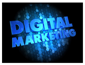 Ecommerce Sales Channel: Digital Marketing Capabilities